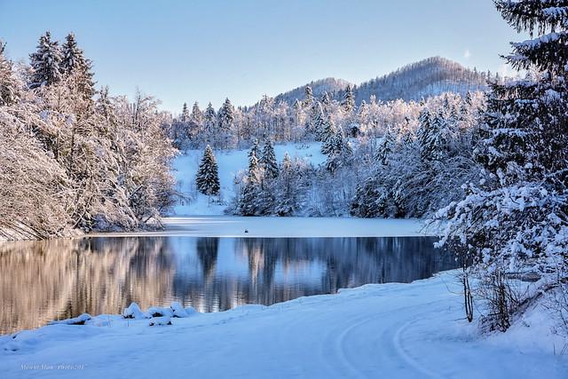Lokvarsko jezero u Mrzloj Vodici zimi