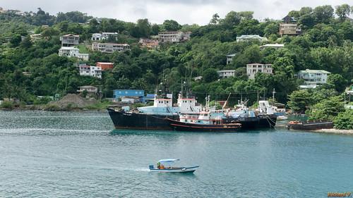 saintelucie caraïbes castries lc bateau boat eau water