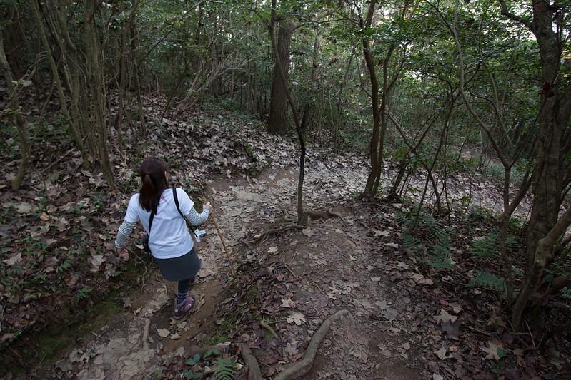 讃岐富士 飯野山 下山