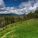 Image: Spring Creek Mountain