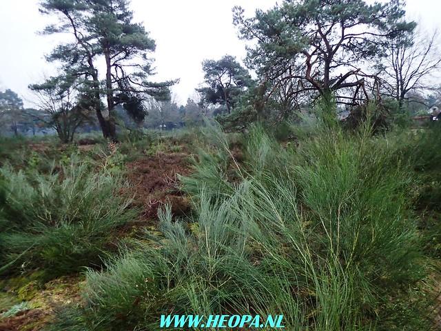 2017-12-23   12e Sagambiara-Walk   27 Km (8)
