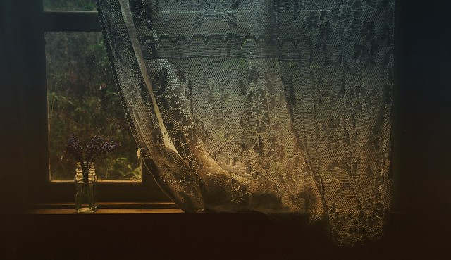 The Lace Curtain