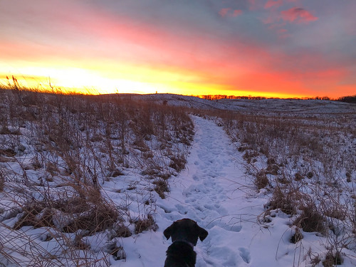 cortana december newrichmond saintcroixprairie stcroixprairie uswetlandsmanagementoffice wisconsin dog hike hiking snow sunset winter unitedstates us