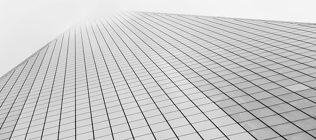 One World Trade Center in black and white
