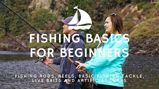 Fishing Basics for Beginners (Learn to Fish: Part 1) | by Victor Mays