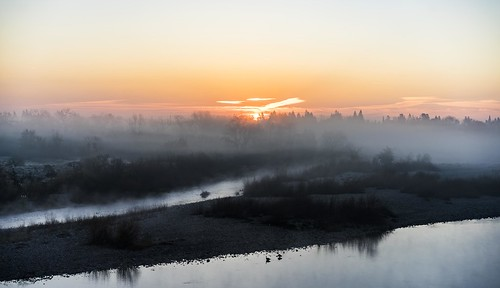 fog morning sacramento americanriver water river dawn sunrise california sonya7ii emount cold nature gold panning