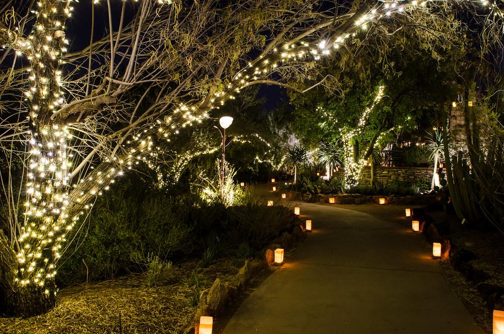 La Noche De Las Luminarias Desert Botanical Garden Flickr
