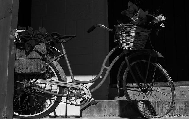 Bicycle. Cloudcroft, NM.