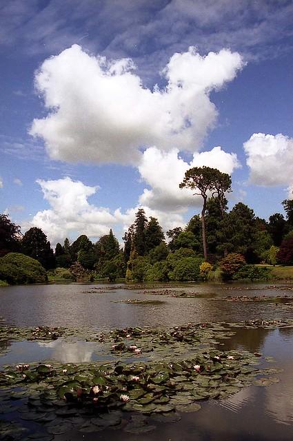 National Trust - Sheffield Park, East Sussex  (05)