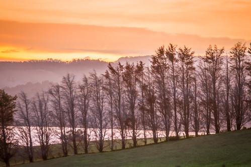 sunset estuary mahurangi newzealand