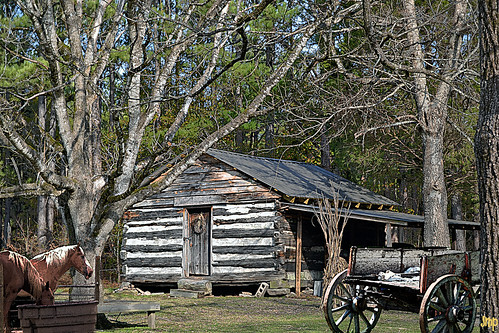 logcabin circa1820 history alabama alabamathebeautiful wagon horses animals farm trees textures travel photoshop nikon nature woods rural rustic old vintage buildings