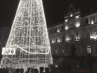 "Christmas is not just ""colors"" 