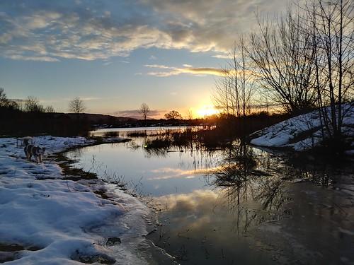 pool water snow winter sunrise sun shine light sky clouds reds trees silhouette hdr phone camera lgk8 cameraphone