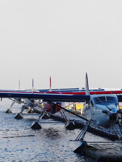 Fogbound Float Planes 3