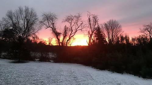 sunrise whitehouse station nj new jersey trees snow