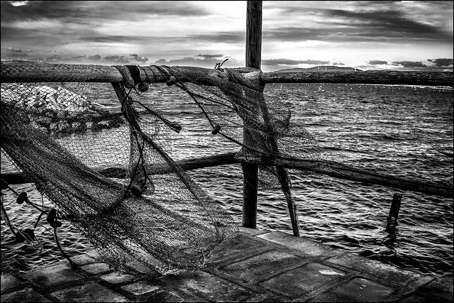 Rets pour exocet... / Net for flying fish...