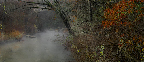 fog foggy mist misty mistymorning creek stream trees forest colors colorful red orange bullcreek austin texas texashillcountry