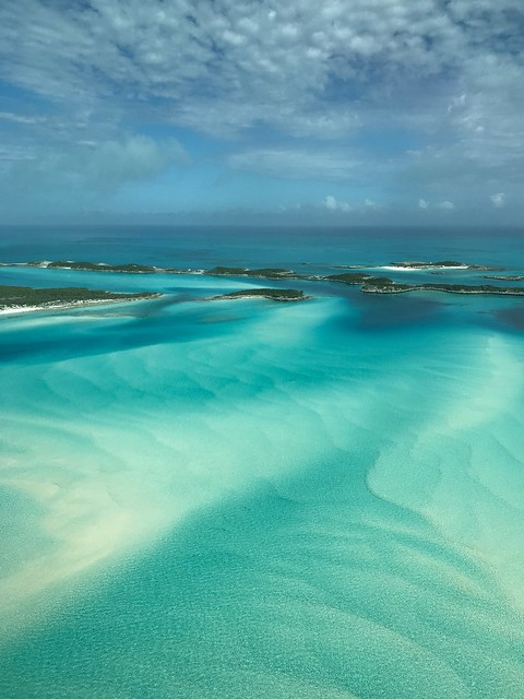Exuma Cays, Bahamas   Captured near Little Halls Pond Cay