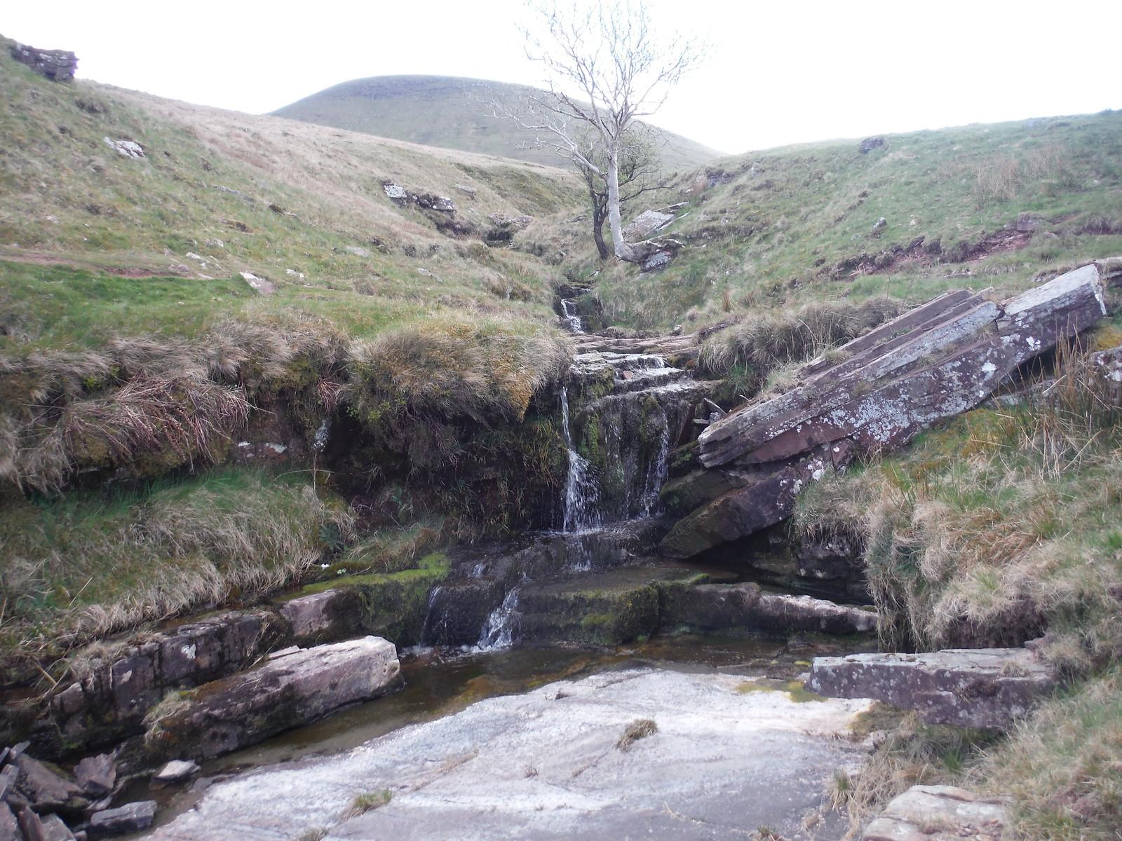 Stream, Craig y Fro SWC Walk 307 - Fforest Fawr Traverse (Craig y Nos to Llwyn-y-celyn) [Storey Arms Ending]