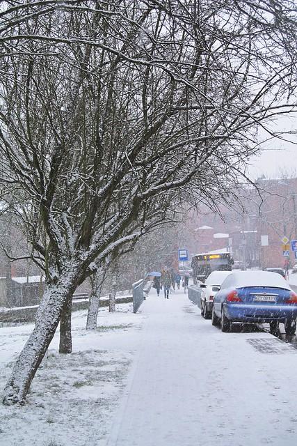 Winter morning :)