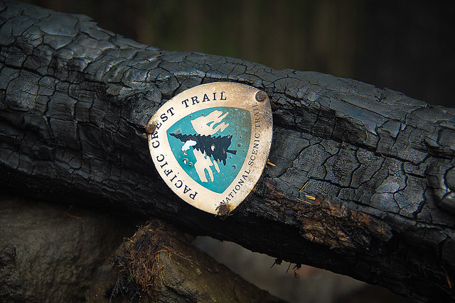 Pacific Crest Trail sign on burned log, photo courtesy of Terry Hill