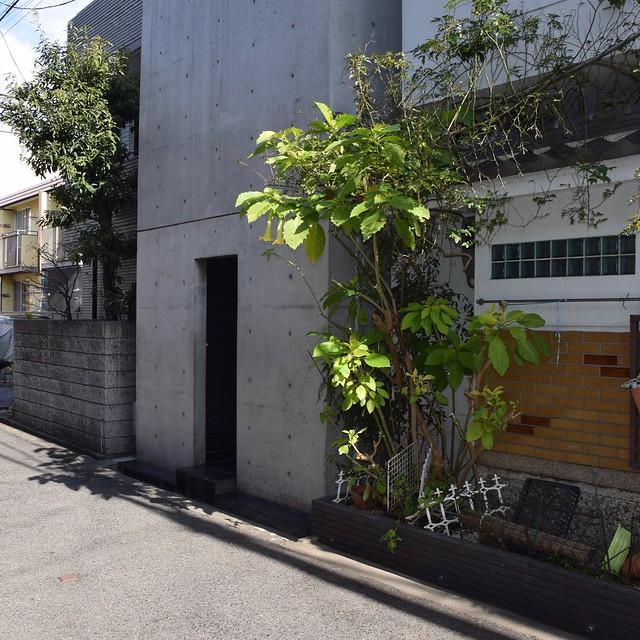 Tadao Ando (安藤忠雄), Row House, Sumiyoshi-ku (住吉区), Osaka