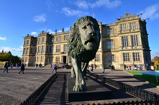 The Lions of Longleat | by Rum Bucolic Ape