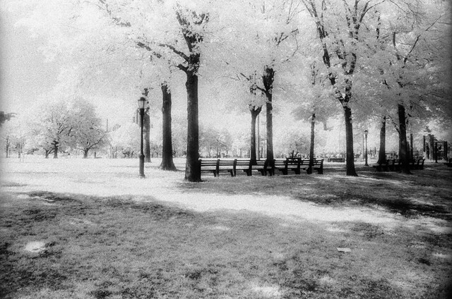 Queensbridge Park Infrared