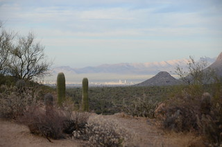 Tucson city view from the forest | by Pierre Yeremian