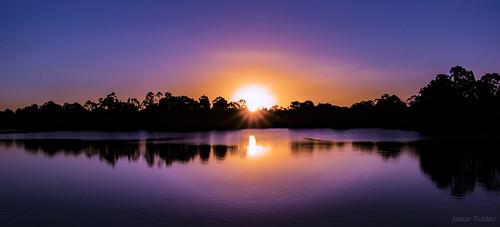 forest lake brisbane queensland australia landscape sun set