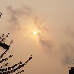 London - dust clouds