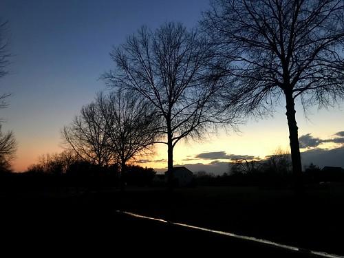 whitehousestation sunset trees readington nj winter