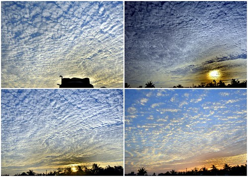 altocumulusclouds chennai clouds evening hdr hues india landscape mackerelsky nature nikond7100 pattern sky sunset