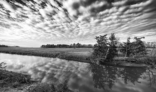 storm clouds creek canarycreek sky blackwhite bw