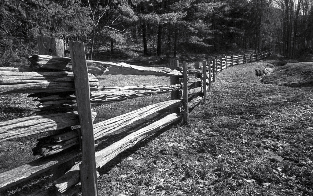 Rustic Fence_
