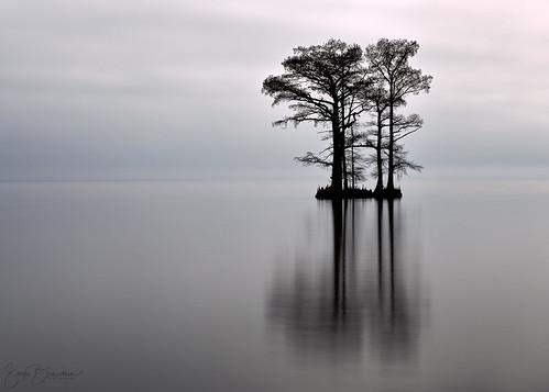 northcarolina albemarlesound water landscape edenton nc clouds étatsunis us lee30ndfilter