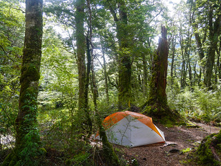 My campsite along the river | by snackronym