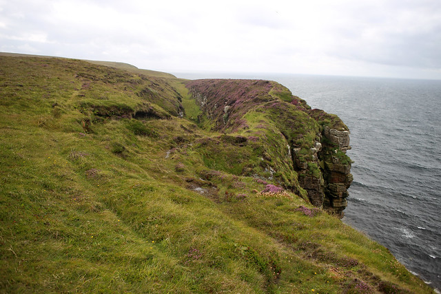 The west coast of Dunnet Head