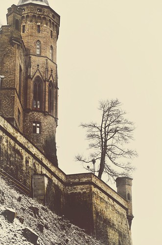 castle building architecture old historical bricks tree lonely one alone outdoors nature light color details view travel explore discover visit hohenzollern bissigen tübingen badenwürttemberg germany europe tower wal