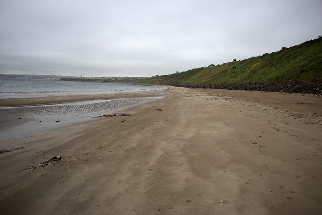 The coast at Scrabster