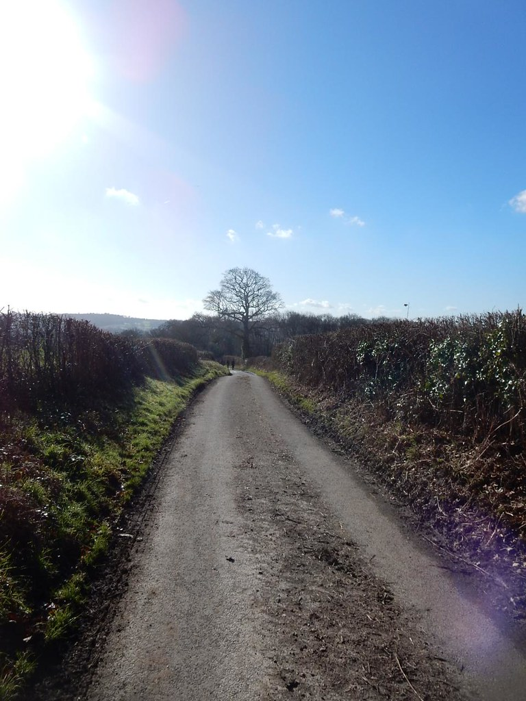 On and on, further up and up Balcombe Circular (winter)