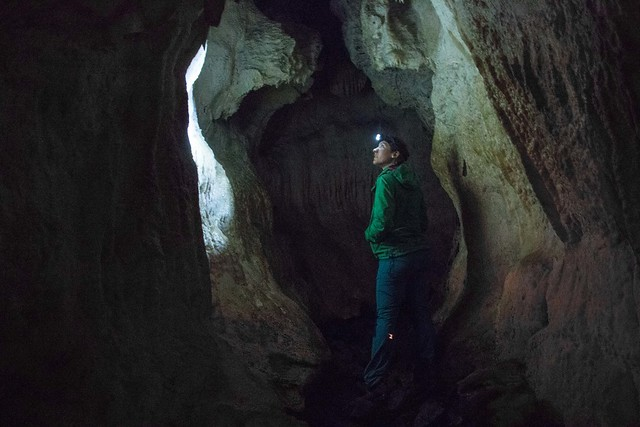 Kepler-Track-Day1-Luscombe-Caves-Chamber