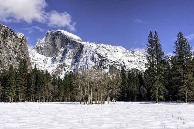 Half Dome Covered in Snow (Explored)