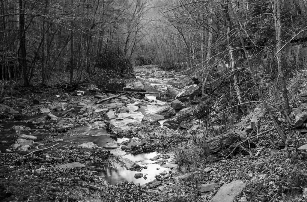 Camp Creek Wv >> Camp Creek State Park Campbell Falls Wv 4bw Puddin Tain