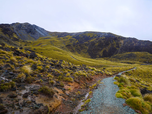 Climbing towards Mt Luxmore from the Luxmore Hut   by snackronym