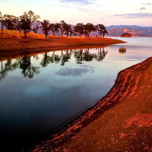 berryessa dusk sunset napa california reflection water tree lake
