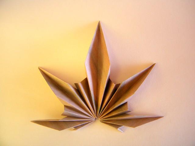 Palm Leaf - Ekaterina Lukasheva