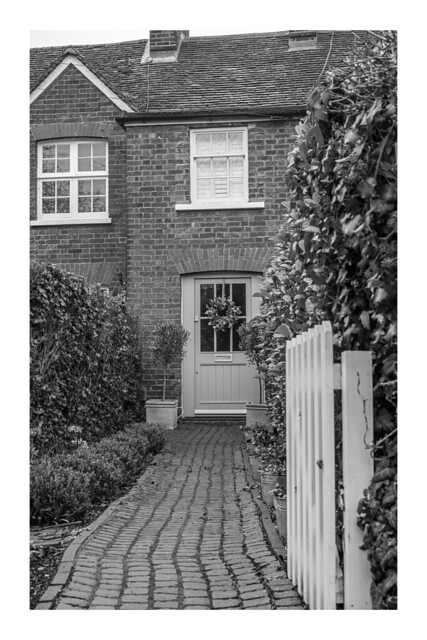 11/365: Up the garden path