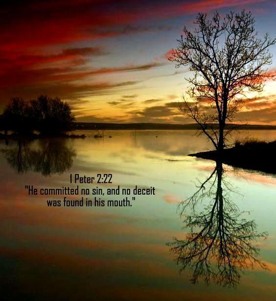 1 peter 2:22