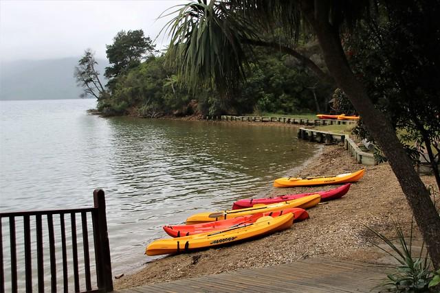 Rainy afternoon at Punga Cove